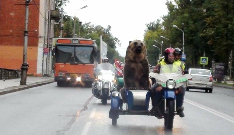 Необычный мотопробег прошел в Пскове, фото-1