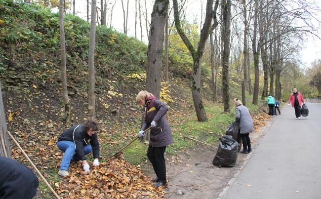 С 1 октября в Пскове стартует осенний месячник по благоустройству и уборке города, фото-1