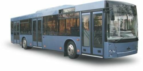 5-дверные «сцепки» и низкопольные автобусы МАЗ могут сменить часть псковских автобусов, фото-1