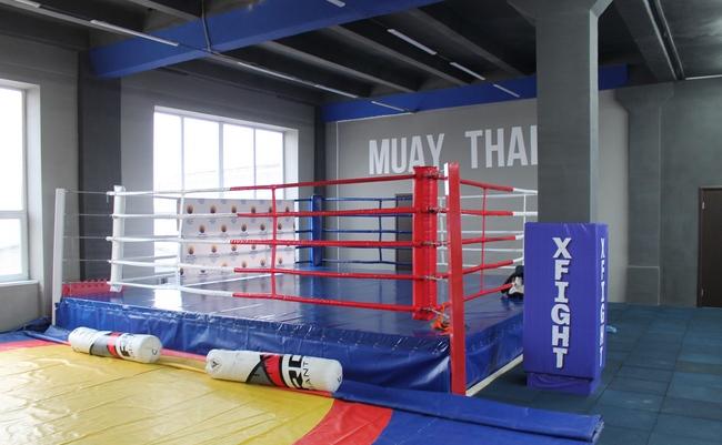 В Пскове открылся новый клуб для занятий бойцовскими видами спорта, фото-2