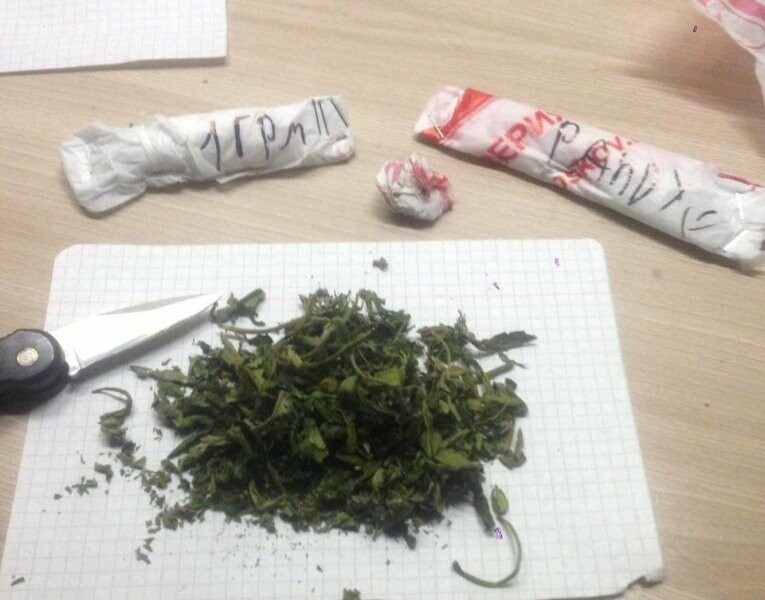 Пскович продавал наркотические средства через интернет , фото-2