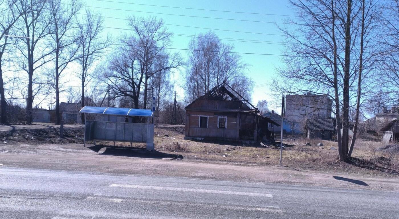 Псковские активисты ОНФ подключились к мониторингу остановок общественного транспорта, фото-1
