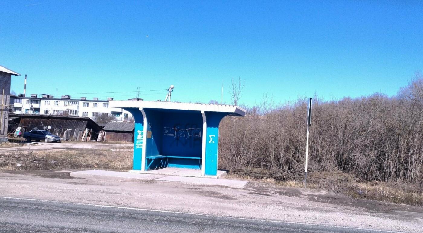 Псковские активисты ОНФ подключились к мониторингу остановок общественного транспорта, фото-2
