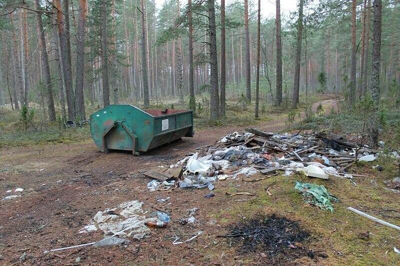 Псковские активисты ОНФ убрали три несанкционированные свалки в лесополосе в Печорском районе, фото-1