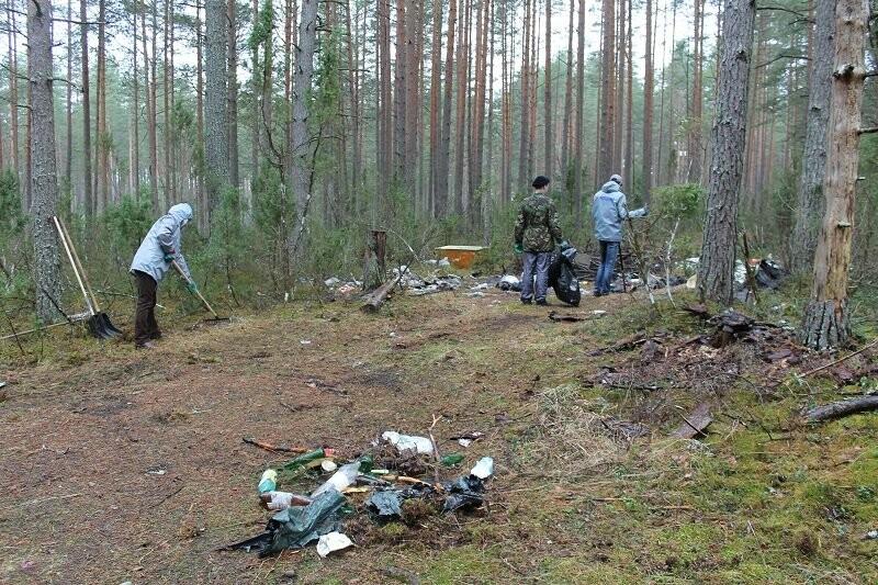 Псковские активисты ОНФ убрали три несанкционированные свалки в лесополосе в Печорском районе, фото-4