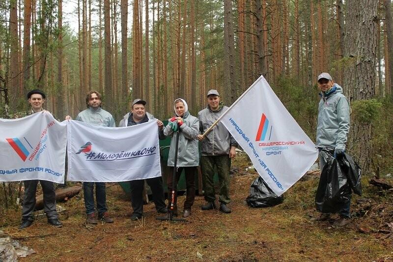 Псковские активисты ОНФ убрали три несанкционированные свалки в лесополосе в Печорском районе, фото-3