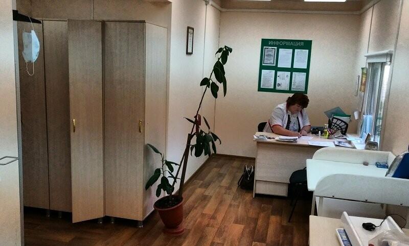Активисты ОНФ провели мониторинг доступности медпомощи в малых населенных пунктах Псковской области, фото-4