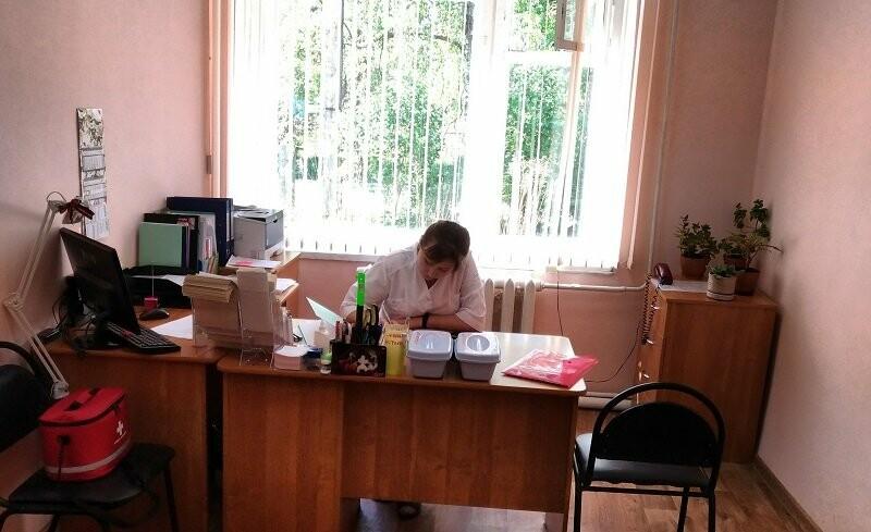 Активисты ОНФ провели мониторинг доступности медпомощи в малых населенных пунктах Псковской области, фото-1