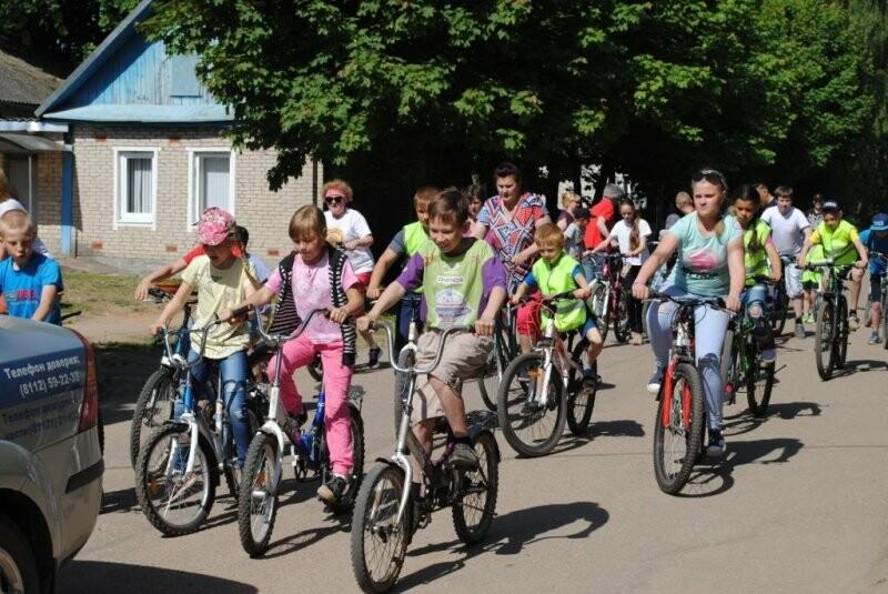 В Псковской области проходит акция «В лето с велосипедом!», фото-2