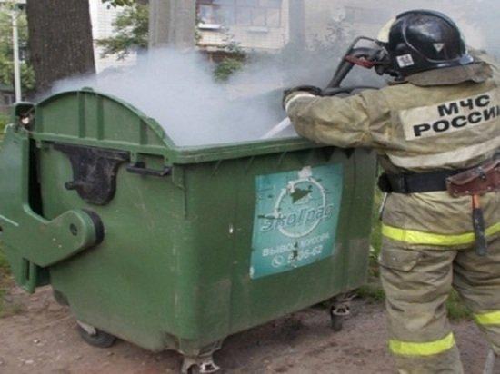 Ночью в Пскове пожарные тушили мусорный контейнер , фото-1