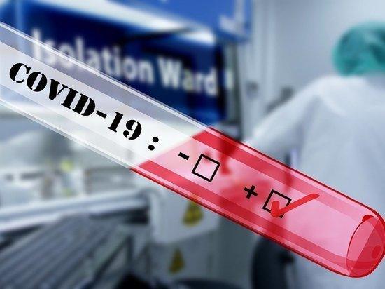 Еще 52 жителя Псковской области избавились от коронавируса, фото-1