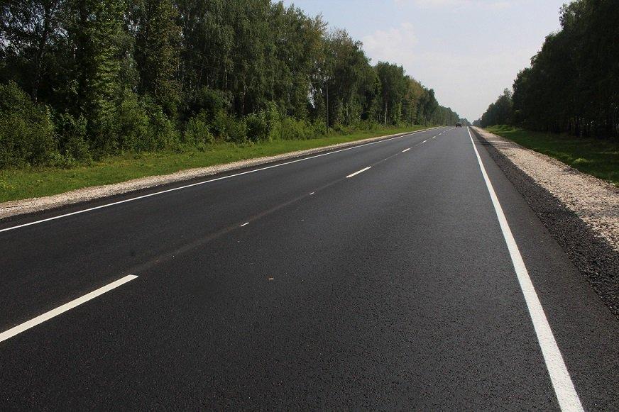 На ремонт дорог Псковская область получила дополнительно 500 млн рублей , фото-1