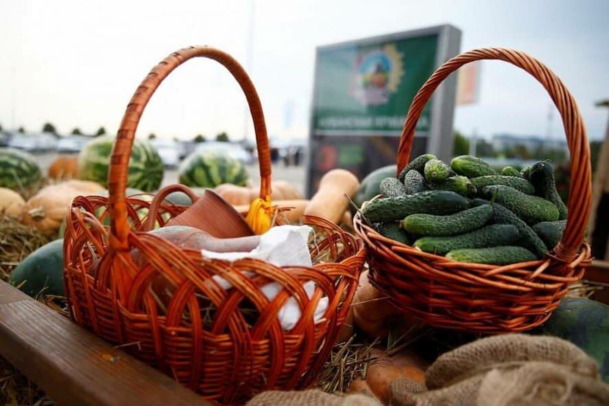 В Пскове 2 октября пройдет сельскохозяйственная ярмарка «Осень 2021», фото-1