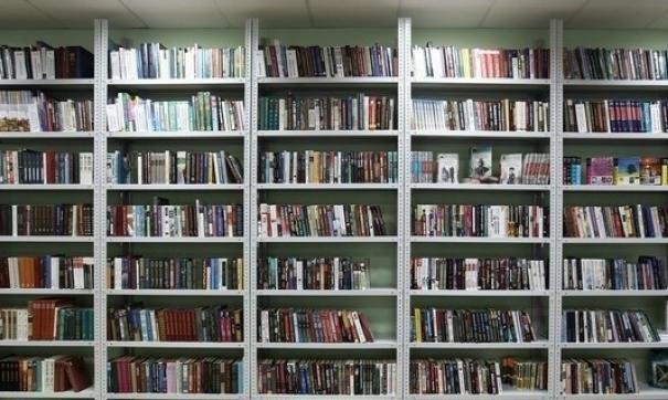 В Псковской области на этой неделе откроются три модельные библиотеки, фото-1