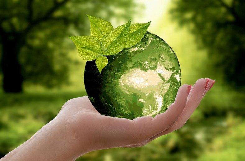 В экологической акции приняли участие псковские росгвардейцы, фото-1