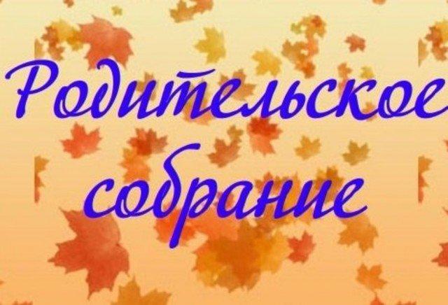 Акция «Единый день родительских собраний» продолжается в Псковской области, фото-1
