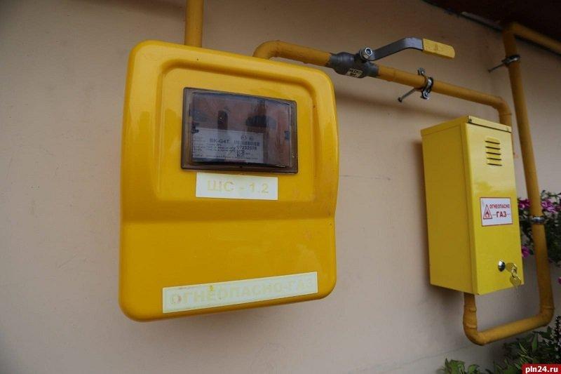 В Псковской области планируют подключить к газу более 30 тысяч домовладений, фото-1